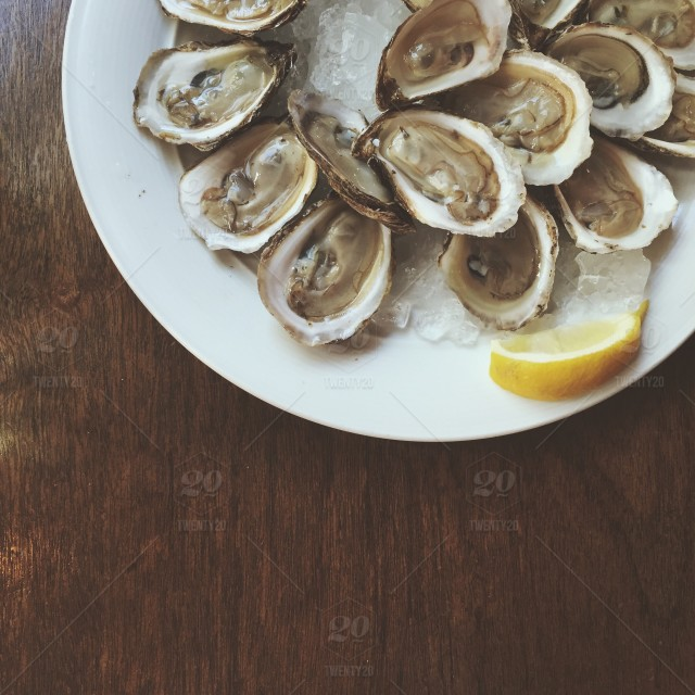 stock-photo-food-summer-ocean-seafood-fresh-oyster-oysters-foodie-a09e220f-bea1-4897-9103-3fd8ad8b293e